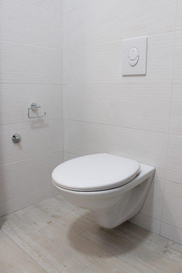 blocked toilets unblocked